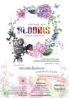 """ประกวดคลิปวีดีโอ หัวข้อ """"เทศกาลเชียงใหม่เบิกบาน : Chiang Mai Blooms"""""""