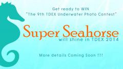 "9th Underwater Photo Contest ""Super Seahorse"""