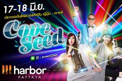 """ประกวดเต้น """"Harbor Pattaya Cove Seed 2017"""""""