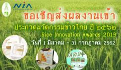 ประกวดนวัตกรรมข้าวไทย ปี 2562 : Rice Innovation Awards 2019