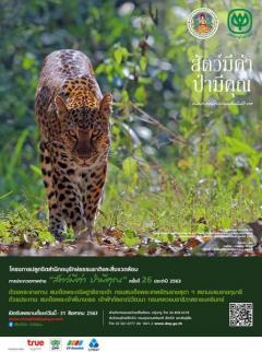 ประกวดภาพถ่าย 'สัตว์มีค่า ป่ามีคุณ' ปีที่ 26