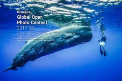 ประกวดภาพถ่าย Olympus Global Open Photo Contest 2017-18